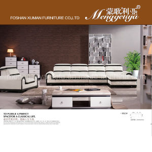 Top Grain Leather Modern Sofa (862#)