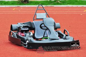 Adult Go Kart 2.5mm Vechile Frame Wholesale Racing Go Kart pictures & photos