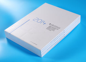 High Quality Catalogue Printing for Company Products pictures & photos
