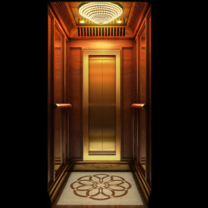 Stable & Standard Villa Elevator Germany Technology