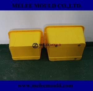 Plastik Tool for Container Box Molding pictures & photos