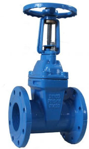 ANSI Standard Cast Iron Gate Valve (ANSI standard) pictures & photos