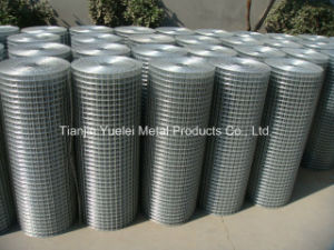 PVC Coated Welded Wire Mesh for Construction, Low Price Galvanized Wire Mesh, Galvanized (after welding) Welded Wire Mesh pictures & photos