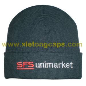 Cheap Promotional Warm Hat (JRK239) pictures & photos