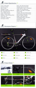 2015 New Model Electric Bicycle with 8fun Motor pictures & photos