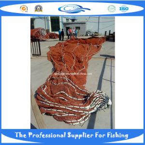 Nylon Net (DSC00365) pictures & photos