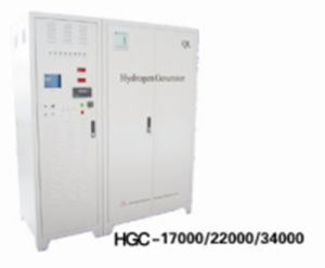 Bioabse Hydrogen Generator 17000ml/Min HGC-17000 pictures & photos