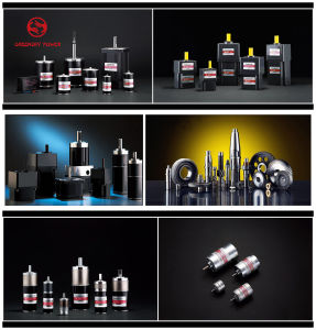 Factory Direct Selling Coreless Brushless Motor, Brushless DC Gear Motor pictures & photos