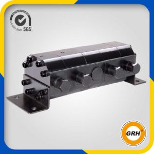 4 Sections Hydraulic Gear Motor Flow Divider pictures & photos