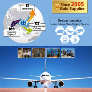 Best Freight Forwarder/ Logistic Service From China to Brazil pictures & photos