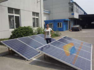 Top Quality 265W Poly Solar Module/Solar Erergy pictures & photos