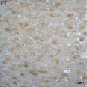 Colorful Building Material Shell Mosaic Wall Tile (CB05) pictures & photos