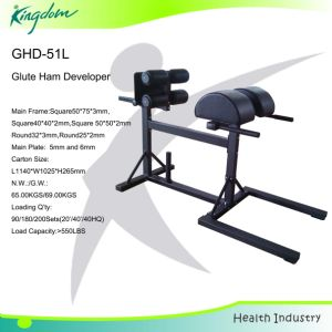 GHD/Fitness Equipment/Commercial Roma Chair/Gym Equipment Glute Ham Developer pictures & photos