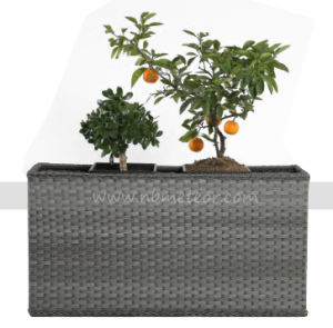 Mtc-214 Plastic Wicker Rattan Flower Pot Planter Pot pictures & photos