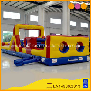 Funny Inflatable Obstacle Course (aq1485-1) pictures & photos