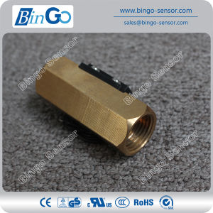 Brass Piston Type Flow Switch for Heater Pump pictures & photos