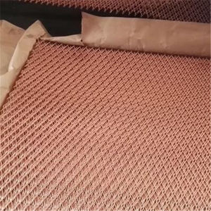 Hot Sale 80 Mesh 100 Mesh Copper Wire Mesh pictures & photos