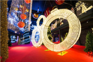 Outdoor LED Christmas Fairy Decoration Outdoor Light pictures & photos