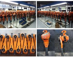 Kixio 6 Ton Lever Hoist (Overload Limiter) pictures & photos