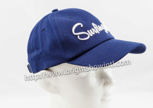 Promotional Blank Trucker Cap /Baseball Cap /Hat pictures & photos