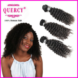 Wholesale Kinky Curly Malaysian Braiding Human Hair pictures & photos