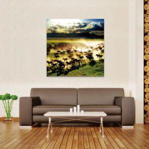 Popular Design Art and Craft pictures & photos