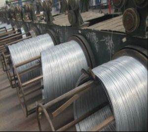 Construction Galvanized Iron Wire/18gauge Soft Binding Wire to Asia pictures & photos