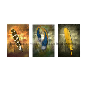 Contemporary Vintage Feather Hanging Canvas Painting for Home Decor (PD0003) pictures & photos