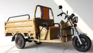 Adult Passenager Tricycle /Motorized Tricycle pictures & photos