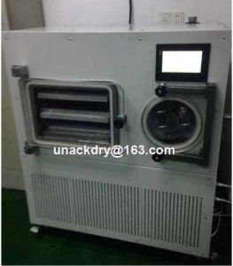 Industrial Vacuum Freeze Dryer for Drying Jackfruit, Pineapple pictures & photos