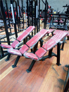 Fitness Equipment /Commercial Use Hammer Strength Machine Incline Bench pictures & photos