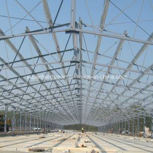 Professional Designed Prefabricated Steel Structure Poultry Farming House pictures & photos