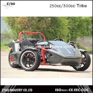 Recumbent Trike 250cc EEC pictures & photos