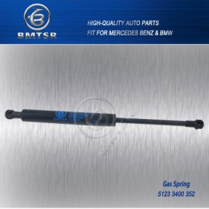 Auto Gas Spring for BMW X3 E83 51233400352 pictures & photos