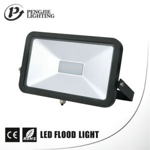 SMD LED Lighting 30W iPad LED Floodlight for Outdoor pictures & photos