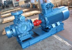 High Efficiency Gear Pump pictures & photos