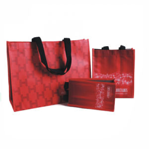 SGS, Eco-Friendly Reusable Non Woven Lamination Tote Bags