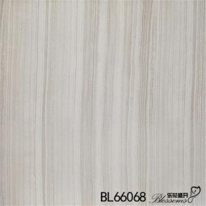 Inkjet Printing Interior Flooring Rustic Stone Ceramic Floor Tile (600X600mm)