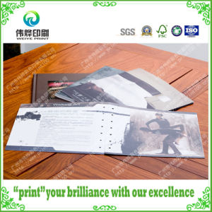 Fancy Paper Offset Printing Booklet / Brochure (for Introduction) pictures & photos