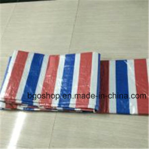 Waterproof Sunshade Tarp PE Tarpaulin in Roll pictures & photos