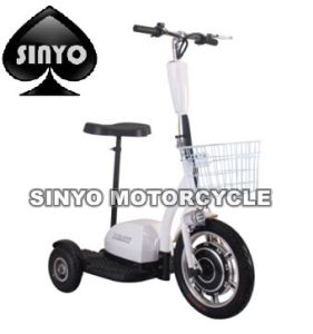 Hot Sell Nice Samll Three Wheel E-Bike pictures & photos
