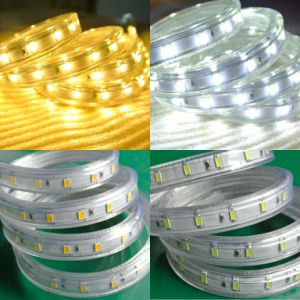 Wholesale White 5630 LED Strip Light 110V 220V Outdoor 50m/Roll pictures & photos