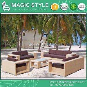 Outdoor Rattan Sofa Sofa Set Wicker Sofa Garden Combination Sofa (Magic Style) Patio Wicker Sofa pictures & photos