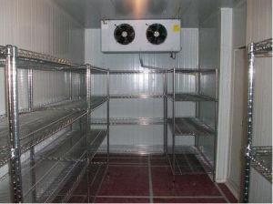 Cuber Ice Freezer Room Blast Freezer Room Low Temperature pictures & photos
