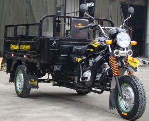 Hot Sale OEM Mini Tricycle Three Wheel Motorcycle pictures & photos