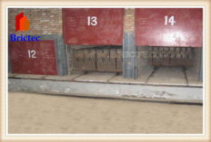 Brick Drying Machine pictures & photos