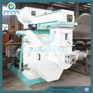 Energy Saving Rice Husk and Wood Pellet Mill pictures & photos