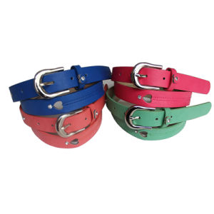 Women′s Fashion Stud Belt Zsb2541