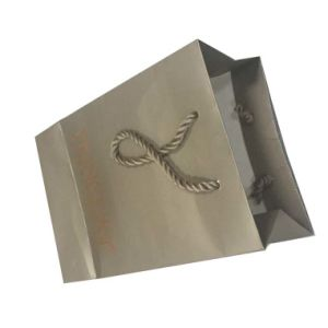 Luxury Cardboard Gift Paper Bag pictures & photos