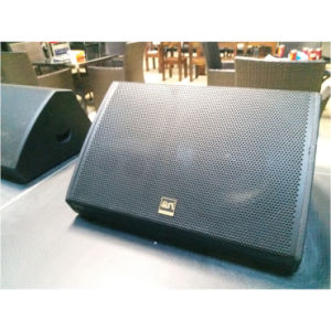 450W Two Way PRO Audio Stage Monitor Speaker (SN152M) pictures & photos